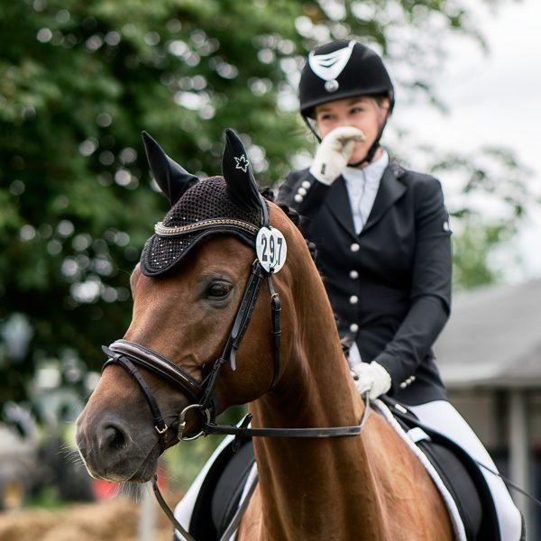 Was motiviert ein Pferd?